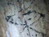 Pintura rupestre encontrada en la cueva Ramos