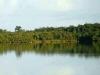 Vista de la Laguna de la Lisa, en el Parque Nacional Caguanes, en Yaguajay