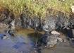 Huellas del derrame. A pesar de las crecidas del arroyo, por las lluvias de estos días, aún se constatan residuos de crudo.