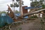 Lo que Irma nos dejó. La feria agropecuaria y el zoológico provincial no escaparon del impacto de Irma. (Foto: Carmen Rodríguez/ Escambray)