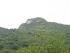 Colinas de natura. La riqueza verde de Banao reúne especies arbóreas alto valor económico. (Fotos: cortesía de la reserva)