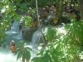 Rancho Querete. Rancho Querete se distingue por una exuberante vegetación, belleza y colorido del entorno.