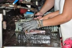 Sancti Spíritus está en 26. La industria pesquera espirituana incrementa sus producciones cada año. (Foto: Vicente Brito/ Escambray)