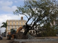 Con una historia que se remonta al siglo XVII, el parque Serafín Sánchez fue demolido hace meses.