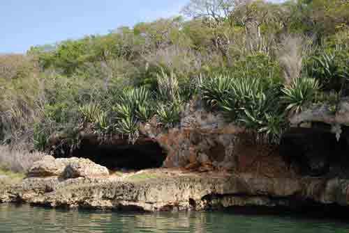Los Cayos de Piedra,  situados en la Bahía de Buenavista, en el Municipio de Yaguajay. Posee varias cuevas con desarrollo de arte rupestre, así como sitios paleontológicos de la fauna extinguida del Cuaternario