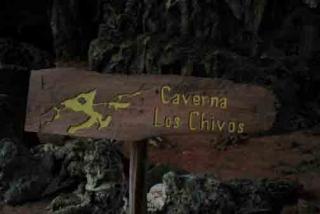 Cueva de los Chivos Es una de las más orientales de las treinta y seis cuevas que se encuentran enCaguanes, formado porun cerro a veinte y siete metros sobre el nivel del mar, unos dos kilómetros de extensión y una longitud total de 11,5 Km. de galerías.