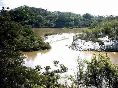 La preservación y conservación de las alturas de la Sierra de las Damas, es una necesidad debido a su fauna variada y especializada.