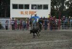 Concluyó Feria Ganadera en Sancti Spíritus