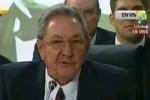 Raúl consideró que el tema básico es que el ALBA tenga éxitos en la cuestión económica.