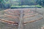 La permacultura persigue recuperar la capacidad productiva del suelo.