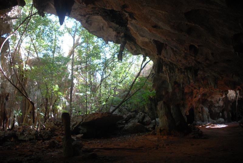 El sistema formado por 36 cuevas, tiene unos 12 kilómetros de galerías, que surgieron bajo el nivel freático y tienen cubierto con agua todos los espacios.