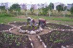 La permacultura incide en el desarrollo social, económico y ecológico.