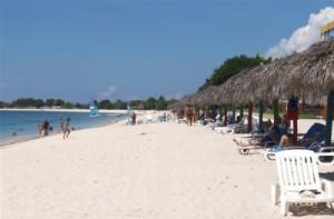 La reforestación de la faja protectora de manglares pueden contribuir al resguardo de los litorales.