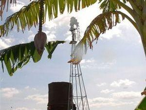 Estudios sobre el empleo de fuentes de energía renovables y potencialidades en la producción de alimentos figuran entre las vertientes investigativas de la Universidad.