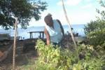 Los pobladores de Tunas de Zaza están vinculados a sus labores habituales. (foto: Vicente Brito)