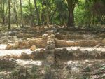 En este sitio se conservan todas las estructuras que componían el sistema fabril típico del siglo XIX como el barracón de esclavos.