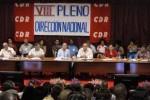 VIII Pleno de los CDR.