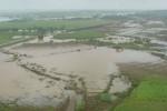 De las pérdidas provocadas en la rama agrícola por las lluvias, solo el 25 por ciento tiene el respaldo del Seguro. (foto: Vicente Brito)