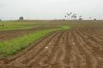 Donde existen medidas de conservación se mitigan los efectos de las lluvias.
