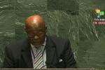 El representante de Barbados solicitó levantar el bloqueó a Cuba (Foto: teleSUR)
