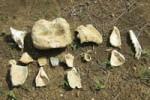Entre las piezas encontradas aparecen diferentes artefactos de piedra.