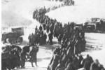 Todo ha terminado. En manos soviéticas quedan 147 000 cadáveres y 91 000 prisioneros.
