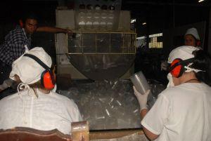 Esta es hoy la única planta del país destinada a la fabricación de productos desechables.