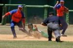 Los Gallos espirituanos pierden por lechada ante el equipo de Cienfuegos.