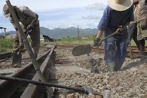 En esas labores participan fuerzas del Ejército Juvenil del Trabajo y del sistema de Ferrocarriles.