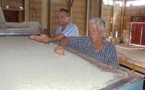Camilo Meneses (izquierda) y Félix Olivera coinciden en reconocer la calidad del mantenimiento en los molinos de Tamarindo.  Foto: J.Borrego