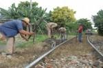 Importantes vías férreas de la provincia se benefician con acciones de mantenimiento.
