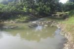 Las medidas adoptadas y las lluvias de días anteriores sanearon a El Donqui.
