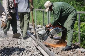 Los trabajos de limpieza de la línea transcurrieron con agilidad y destreza. (Foto Vicente Brito)