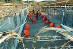 La base de Guantánamo es reconocida en el mundo como un centro de torturas.