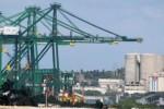 La ZED será un eje de comercio para el Caribe y las Américas y abarca 465,4 kilómetros cuadrados.