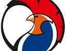 Logotipo de los Gallos en la presente temporada.