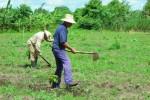 La auditoría detectó dificultades en el uso y control de la tierra.