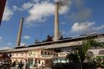 El central se propone alcanzar uno alto rendimiento fabril.