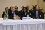 Siria es una nación soberana y hará lo que considere necesario en interés de su pueblo, dijo el canciller.