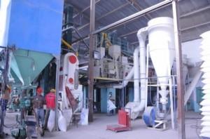 A inicios de diciembre la producción del Manolo Solano rebasaba las 6 630 toneladas de arroz consumo.