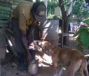 Santos ha hecho suyo el Asilo Canino de Sancti Spíritus, un proyecto de la Fundación de la Naturaleza y el Hombre.