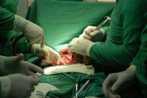 La Jornada territorial de Cirugía Sancti Spíritus 2014 reunió a casi un centenar de cirujanos de las provincias de Ciego de Ávila, Villa Clara y Cienfuegos.