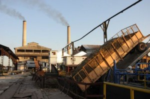 Por concepto de aprovechamiento industrial Uruguay ha ganado más de 2 000 toneladas de azúcar en la presente zafra.