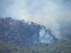 La principal causa de los incendios lo constituye la quema ilegal de terrenos para el pastoreo.
