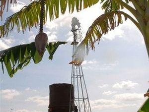 La utilización de molinos a viento reduce las emisiones de dióxido de carbono a la atmósfera.