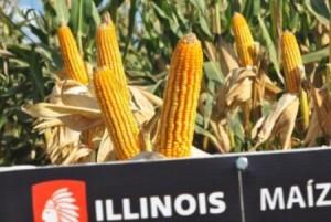 La ubicación de Cuba representa una excelente oportunidad para los productos alimentarios y de consumo de Illinois.