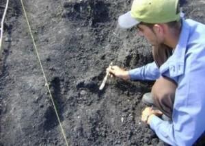 Como resultado de las excavaciones en el lugar, el equipo de especialistas encontró evidencias de la cultura aborigen.