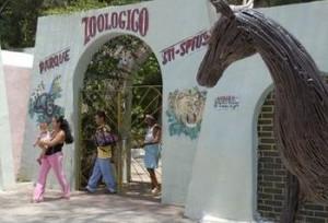 Al Zoológico concurren cada año más de 10 000 personas, fundamentalmente, niños y padres.