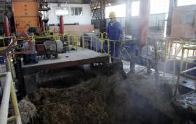 Por concepto de aprovechamiento industrial Uruguay ha ganado más de 2 000 toneladas de azúcar en la presente zafra. (Foto:Ismael Francisco)