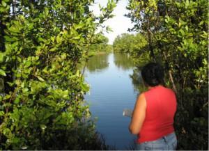 Especialistas de la Estación de Monitoreo Costero de Yaguajay desarrollan múltiples investigaciones y observaciones continuas en estas áreas.